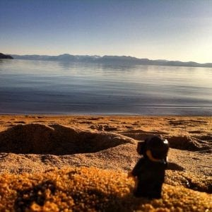 Minifigure lego sand harbor lake tahoe mini figure photo