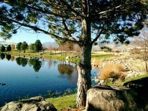walk-vintgage-lake-11-8-16