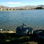 walk-the-vintage-lake-12-6-16-2