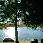 walk-vintage-lake-12-2-16-1