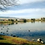 walk-and-ducks-vintage-lake-11-24-16-2