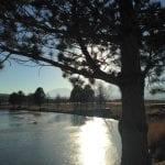 walk-with-thomas-vintage-lake-12-29-16-1
