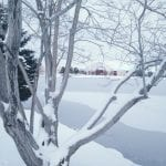 Winter Wonderland 1.6.17 #2