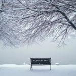 Winter Wonderland Walk Vintage 1.12.17 #1