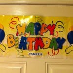 Camilla's Birthday Celebration 2.14.15 #1