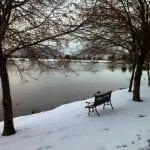 Team TLC Walk Vintage Lake 2.3.16 #4