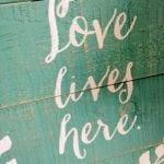 Love Lives Here Grateful Gardens 2.26.17 #2