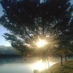 Walk Vintage Lake Team TLC 3.10.17 #1