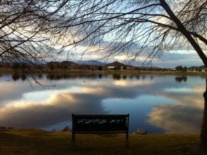 Bench at Vintage Lake February 2016