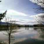 Walk with Lillian Vintage Lake 4.25.17 #3