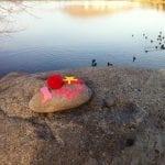 Walk with Thomas Vintage Lake 2.23.16 #5