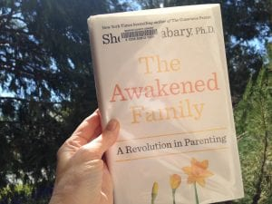 Awakened Family Book 2017