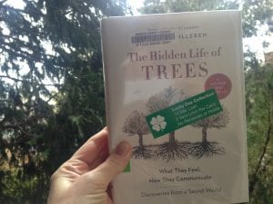 The Hidden Life of Trees Book 2016