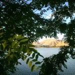 Team TLC Sunset Walk Vintage lake 6.15.17 #5