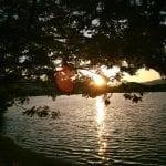 Team TLC Walk Vintage Lake 6.2.7 #5