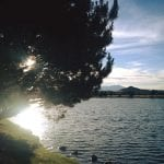 Walk with Lillian Vintage Lake Sunset 6.15.17 #9