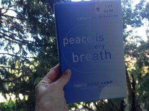 peace is every breath book 2017
