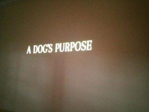 A Dog's Purpose Movie 6.18.17