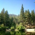 Solo Walk Galena Creek Marilyn's Pond 7.5.17 #6