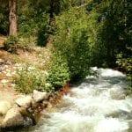 Solo Walk Galena Creek Marilyn's Pond 7.5.17 #7