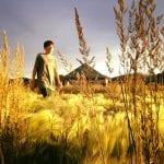 Team TLC Sunset Walk Damonte Ranch Trail 6.18.17 #1