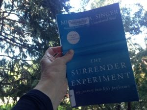 The Surrender Experiment Book 2017