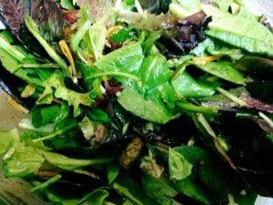 Harvest Blend Salad 10.19.17