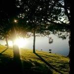 Walk with Thomas and Camilla Vintage Lake 9.29.17 #1