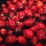 Cranberries Thanksgiving 2017 11.23.17