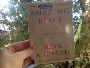 Amazing Peace Book 12.9.17