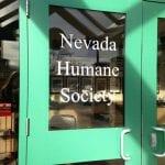 Humane Society Volunteering 12.29.17 #1
