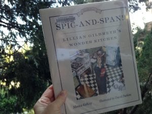 Spic and Span Book 2017