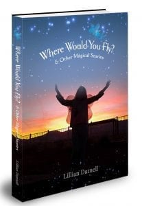 Where Would You Fly Updated Cover 9.2017
