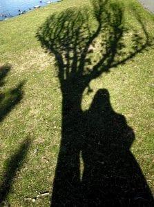 Camilla Shadow and Tree Shadow 2017