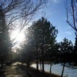 Walk with Thomas Vintage Lake 2.11.18 #1