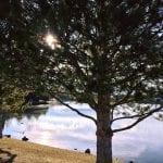 Camilla Solo Walk Vintage Lake 3.11.18 #2