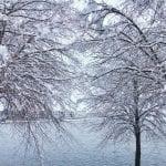 Snow Vintage Lake 3.16.18 #5