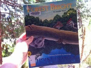 Forest Bright Forest Night Book 2016