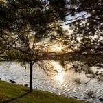 Sunset Walk with Lillian Vintage lake 5.3.18 #6