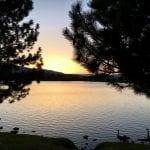 Sunset Walk with Thomas 4.28.18 #3