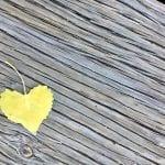 Walk Vintage Lake Heart 5.30.18 #2