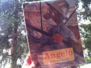 Angelo Book 2016 June 2018