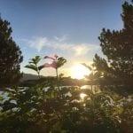 Sunset Walk Vintage Lake 6.22.18 #4