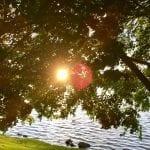 Sunset Walk with Thomas Vintage Lake 6.6.18 #9