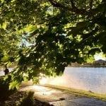 Sunset Walk with Thomas and Lillian Vintage Lake 6.27.18 #8