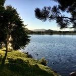 Sunset Walk with Thomas and Lillian Vintage Lake 6.27.18 #9